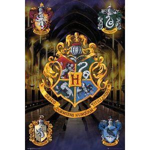 Poster - Harry Potter | GB Eye imagine