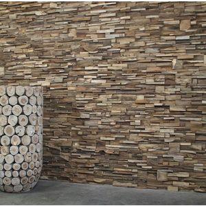 Panouri decorative 3D Tec Root, 8 placi 20x73cm imagine