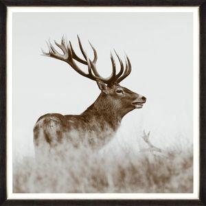 Tablou Framed Art Red Deer imagine