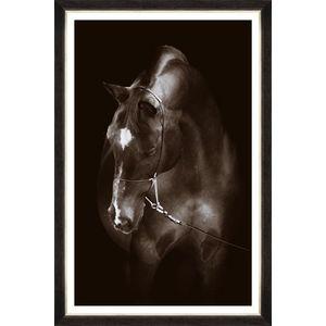 Tablou Framed Art Horse Resting imagine